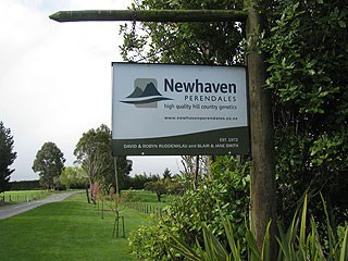 Newhaven Perendales