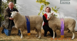 Malcolm Fletcher and Trudy Boyer with two 'Mount Monmot' Sires