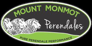 Mount Monmot
